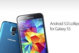 هاتف Galaxy S5 المزود بمعالج Exynos يتلقى تحديث أندرويد 5.0