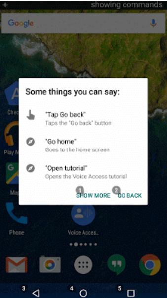 Voice-Access