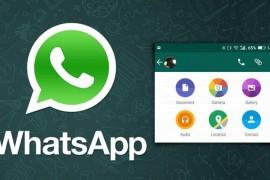 """تطبيق Whatsapp يدعم تبادل مستندات الأوفيس """" Office """""""